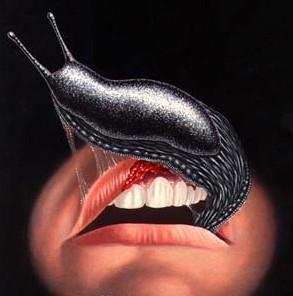 slugs2
