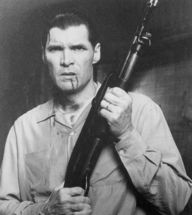 everett mcgill now