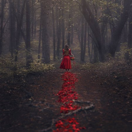 the_trail_of_red_by_parvanaphotography-d8d1uks