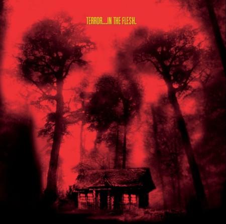 cabin-fever-poster1