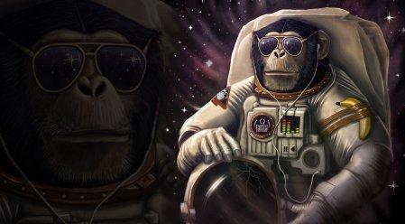 chimpanzee-monkey-suit-helmet-banana-sunglasses-humor-of-the-crack-headphones