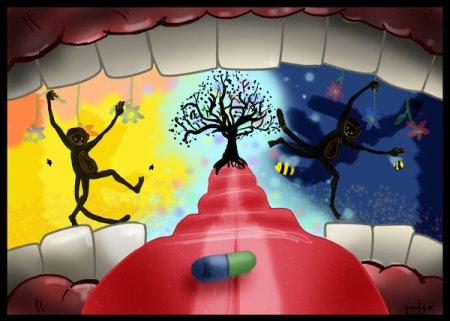 the_dangers_of_drugs_n_monkeys_by_lovesharp
