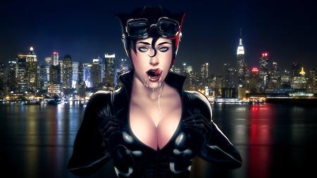 catwoman_hd_wallpaper_by_phantom3013-d5byo5v